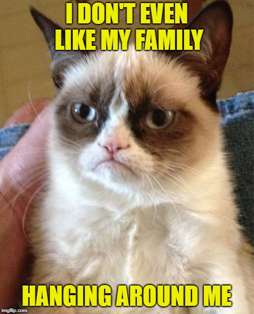 Grumpy Cat Meme | I DON'T EVEN LIKE MY FAMILY HANGING AROUND ME | image tagged in memes,grumpy cat | made w/ Imgflip meme maker