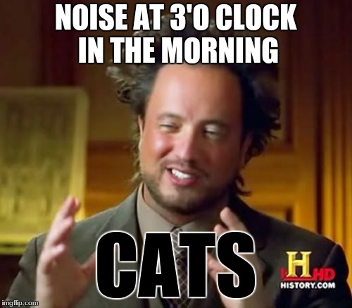 Ancient Aliens Meme | NOISE AT 3'O CLOCK IN THE MORNING CATS | image tagged in memes,ancient aliens | made w/ Imgflip meme maker