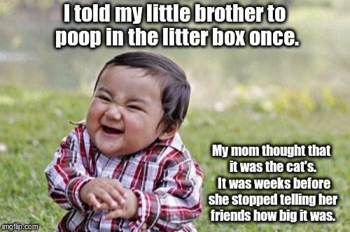 Evil Toddler Meme | I told my little brother to poop in the litter box once. My mom thought that it was the cat's.  It was weeks before she stopped telling her  | image tagged in memes,evil toddler | made w/ Imgflip meme maker