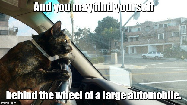 And you may find yourself behind the wheel of a large automobile. | made w/ Imgflip meme maker