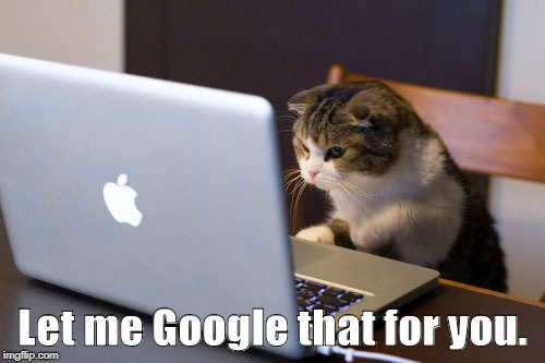 kitten at laptop |  Let me Google that for you. | image tagged in kitten at laptop | made w/ Imgflip meme maker