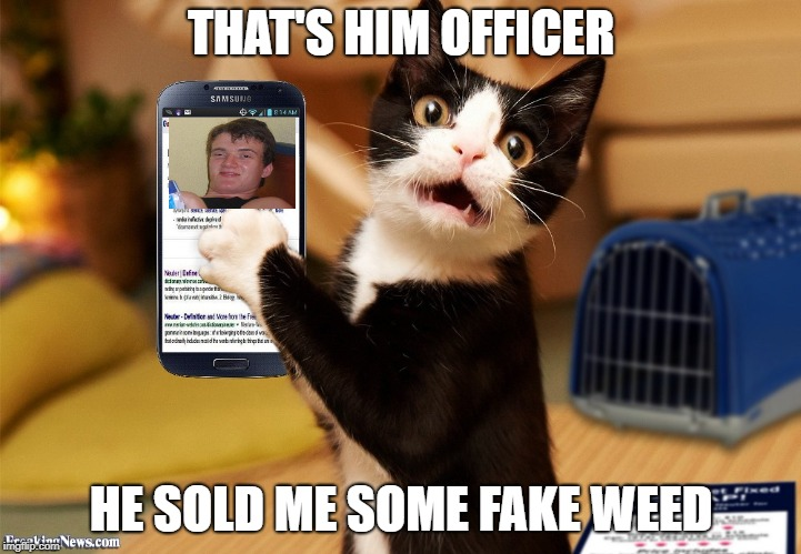 THAT'S HIM OFFICER HE SOLD ME SOME FAKE WEED | made w/ Imgflip meme maker