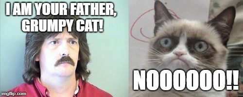 Grumpy Cats Father | I AM YOUR FATHER, GRUMPY CAT! NOOOOOO!! | image tagged in memes,grumpy cats father,grumpy cat | made w/ Imgflip meme maker