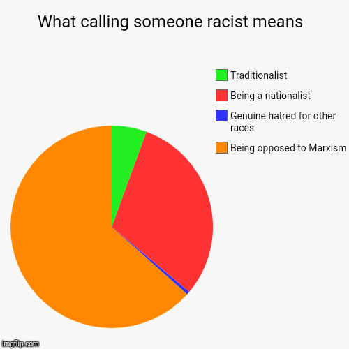 What calling someone racist means  | Being opposed to Marxism , Genuine hatred for other races , Being a nationalist , Traditionalist | image tagged in funny,pie charts,not racist,marxism,nationalism,traditionalism | made w/ Imgflip chart maker