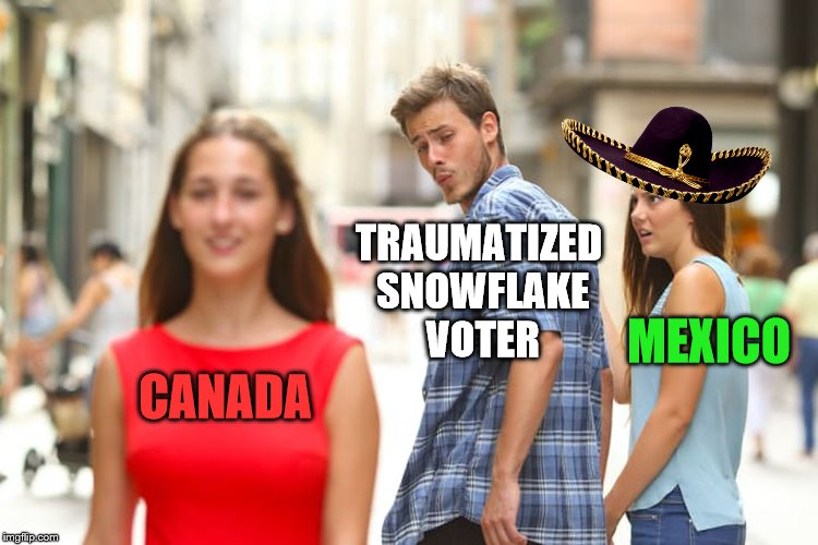 Distracted Boyfriend Meme | CANADA TRAUMATIZED SNOWFLAKE VOTER MEXICO | image tagged in memes,distracted boyfriend | made w/ Imgflip meme maker