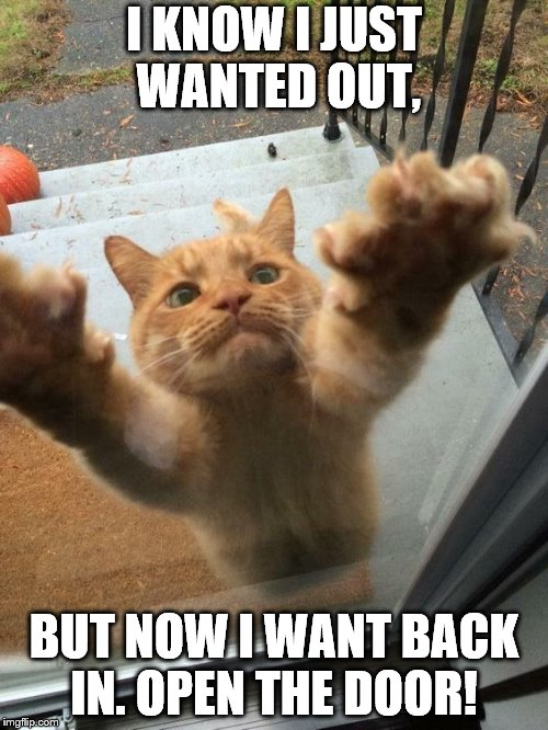Silly kitty | I KNOW I JUST WANTED OUT, BUT NOW I WANT BACK IN. OPEN THE DOOR! | image tagged in impatient kitty | made w/ Imgflip meme maker