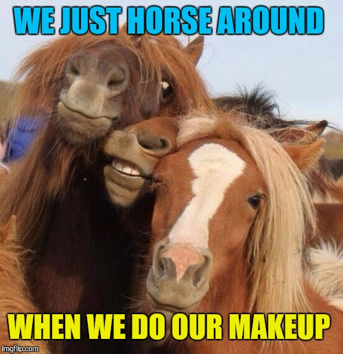WE JUST HORSE AROUND WHEN WE DO OUR MAKEUP | made w/ Imgflip meme maker