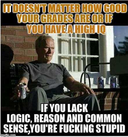 There's some truth | IT DOESN'T MATTER HOW GOOD YOUR GRADES ARE OR IF YOU HAVE A HIGH IQ | image tagged in logically clint of the eastwood reason,the way of the world,reasoning without logic is dullardly,memes to meme me again | made w/ Imgflip meme maker