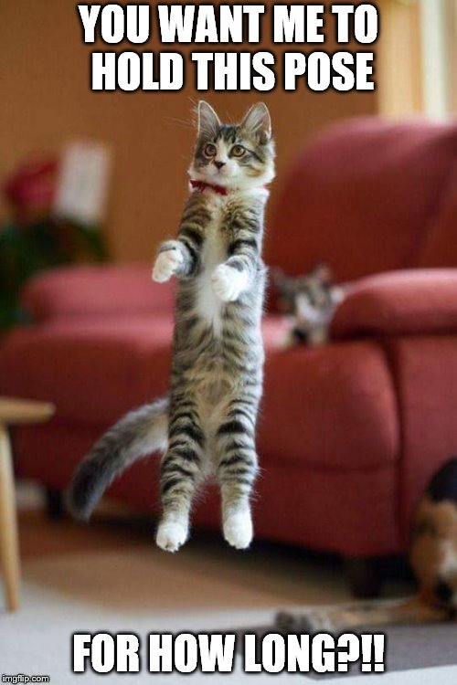 Jumping cat | YOU WANT ME TO HOLD THIS POSE FOR HOW LONG?!! | image tagged in kitty | made w/ Imgflip meme maker