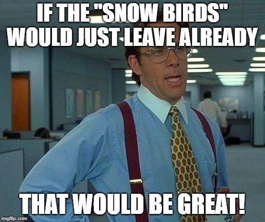 "That Would Be Great Meme | IF THE ""SNOW BIRDS"" WOULD JUST LEAVE ALREADY THAT WOULD BE GREAT! 