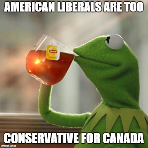 But Thats None Of My Business Meme | AMERICAN LIBERALS ARE TOO CONSERVATIVE FOR CANADA | image tagged in memes,but thats none of my business,kermit the frog | made w/ Imgflip meme maker