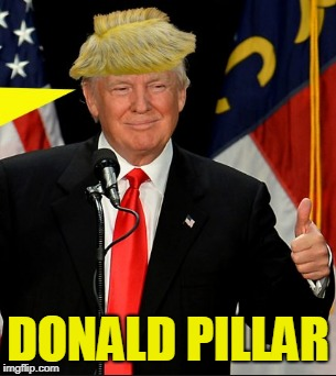 We all hear about Donald Duck  Now It is Donald Pillar | DONALD PILLAR | image tagged in lol so funny | made w/ Imgflip meme maker