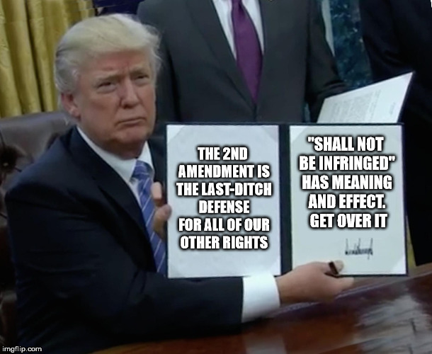 "Trump Bill Signing Meme | THE 2ND AMENDMENT IS THE LAST-DITCH DEFENSE FOR ALL OF OUR OTHER RIGHTS ""SHALL NOT BE INFRINGED"" HAS MEANING AND EFFECT.  GET OVER IT 