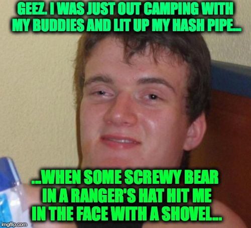 Fire Season Coming Soon... | GEEZ. I WAS JUST OUT CAMPING WITH MY BUDDIES AND LIT UP MY HASH PIPE... ...WHEN SOME SCREWY BEAR IN A RANGER'S HAT HIT ME IN THE FACE WITH A | image tagged in memes,10 guy | made w/ Imgflip meme maker