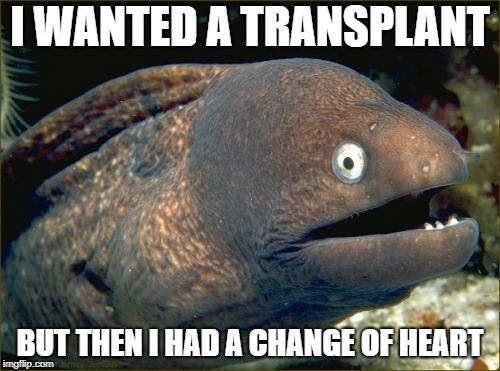 Bad Joke Eel Meme | I WANTED A TRANSPLANT BUT THEN I HAD A CHANGE OF HEART | image tagged in memes,bad joke eel | made w/ Imgflip meme maker