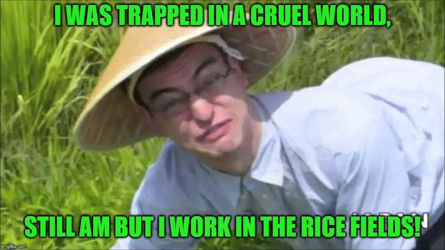 I WAS TRAPPED IN A CRUEL WORLD, STILL AM BUT I WORK IN THE RICE FIELDS! | made w/ Imgflip meme maker