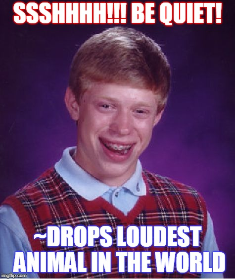Bad Luck Brian Meme | SSSHHHH!!! BE QUIET! ~DROPS LOUDEST ANIMAL IN THE WORLD | image tagged in memes,bad luck brian | made w/ Imgflip meme maker