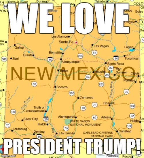 WE LOVE PRESIDENT TRUMP! | image tagged in nm4trump | made w/ Imgflip meme maker