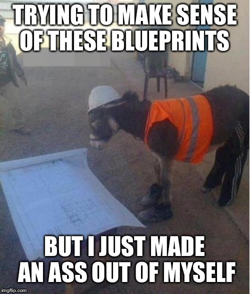 When your the only Journeyman on site and they hand you the prints | TRYING TO MAKE SENSE OF THESE BLUEPRINTS BUT I JUST MADE AN ASS OUT OF MYSELF | image tagged in dumbass | made w/ Imgflip meme maker