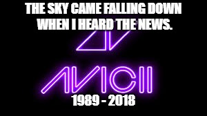 R.I.P. Avicii | THE SKY CAME FALLING DOWN WHEN I HEARD THE NEWS. 1989 - 2018 | image tagged in avicii | made w/ Imgflip meme maker
