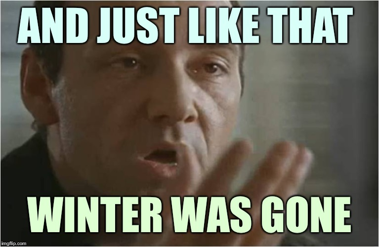 Verbal Kint Was Gone | AND JUST LIKE THAT WINTER WAS GONE | image tagged in verbal kint was gone,memes,winter,spring | made w/ Imgflip meme maker