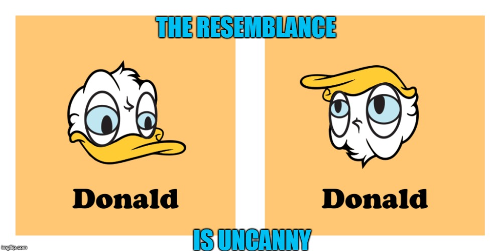 Fowl/Foul | THE RESEMBLANCE IS UNCANNY | image tagged in donald duck,donald trump,funny meme | made w/ Imgflip meme maker