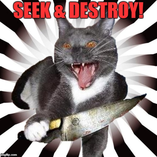 SEEK & DESTROY! | made w/ Imgflip meme maker
