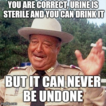 Your argument is invalid | YOU ARE CORRECT, URINE IS STERILE AND YOU CAN DRINK IT BUT IT CAN NEVER BE UNDONE | image tagged in buford t justice,nsfw | made w/ Imgflip meme maker