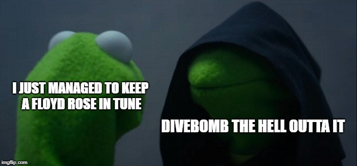 Only Guitarists Will Understand This | I JUST MANAGED TO KEEP A FLOYD ROSE IN TUNE DIVEBOMB THE HELL OUTTA IT | image tagged in memes,evil kermit,floyd rose,tune,divebomb,doctordoomsday180 | made w/ Imgflip meme maker