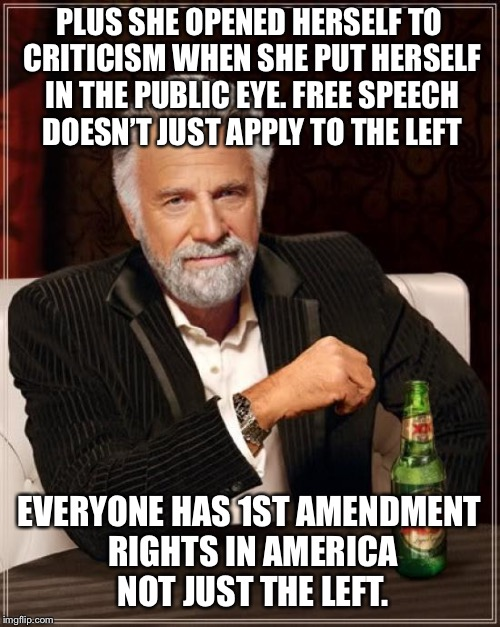 The Most Interesting Man In The World Meme | PLUS SHE OPENED HERSELF TO CRITICISM WHEN SHE PUT HERSELF IN THE PUBLIC EYE. FREE SPEECH DOESN'T JUST APPLY TO THE LEFT EVERYONE HAS 1ST AME | image tagged in memes,the most interesting man in the world | made w/ Imgflip meme maker