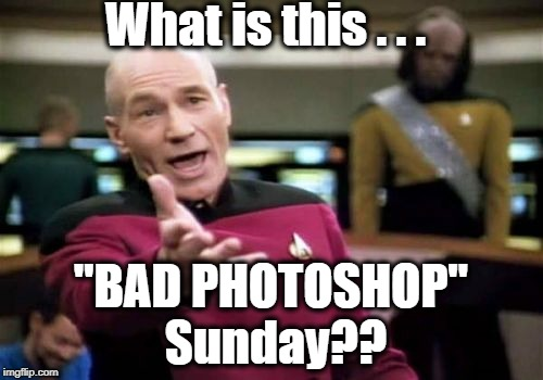 "Picard Wtf Meme | What is this . . . ""BAD PHOTOSHOP"" Sunday?? 