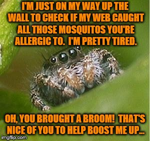 He's just looking out for you. | I'M JUST ON MY WAY UP THE WALL TO CHECK IF MY WEB CAUGHT ALL THOSE MOSQUITOS YOU'RE ALLERGIC TO.  I'M PRETTY TIRED. OH, YOU BROUGHT A BROOM! | image tagged in misunderstood spider,memes,broom,mosquito | made w/ Imgflip meme maker