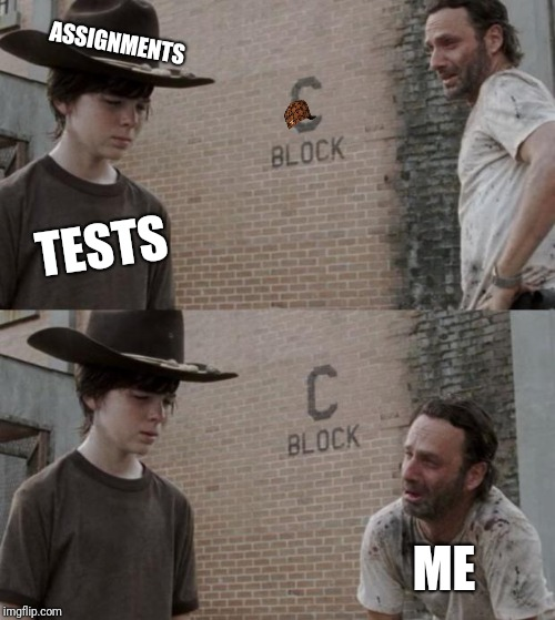 Rick and Carl Meme | TESTS ASSIGNMENTS ME | image tagged in memes,rick and carl,scumbag | made w/ Imgflip meme maker