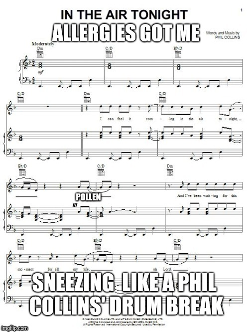 Cha Choo Cha choo ch Cha choo kwue | ALLERGIES GOT ME SNEEZING  LIKE A PHIL COLLINS' DRUM BREAK | image tagged in allergies,spring,drums,sneeze | made w/ Imgflip meme maker