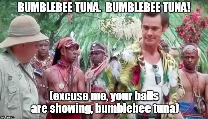BUMBLEBEE TUNA.  BUMBLEBEE TUNA! (excuse me, your balls are showing, bumblebee tuna) | made w/ Imgflip meme maker