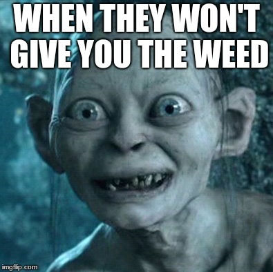 Gollum Meme | WHEN THEY WON'T GIVE YOU THE WEED | image tagged in memes,gollum | made w/ Imgflip meme maker