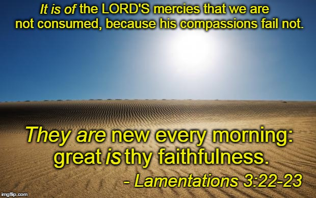 Encouragement in times of trouble. And when it came to trouble, Jeremiah knew what he was talking about. | the LORD'S mercies that we are not consumed, because his compassions fail not. new every morning: great    thy faithfulness. is They are - L | image tagged in desert,memes,bible,jeremiah,lamentations,bible verse | made w/ Imgflip meme maker
