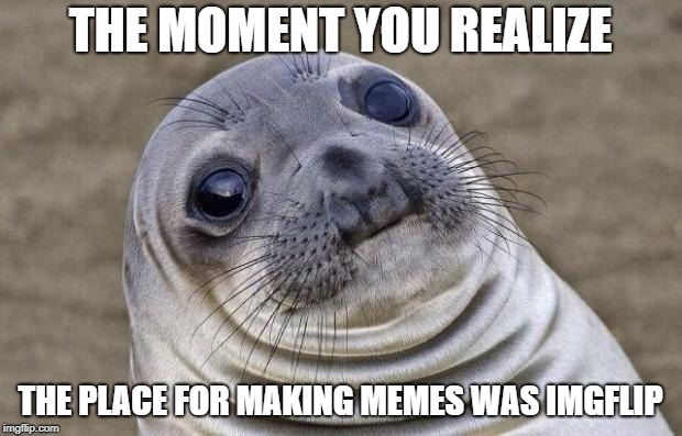 Awkward Moment Sealion Meme | THE MOMENT YOU REALIZE THE PLACE FOR MAKING MEMES WAS IMGFLIP | image tagged in memes,awkward moment sealion | made w/ Imgflip meme maker