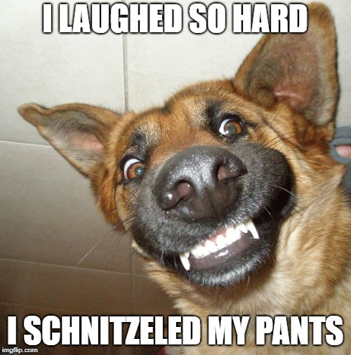 I LAUGHED SO HARD I SCHNITZELED MY PANTS | made w/ Imgflip meme maker
