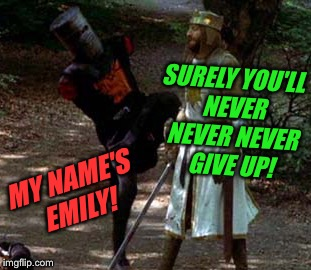 SURELY YOU'LL NEVER NEVER NEVER GIVE UP! MY NAME'S EMILY! | made w/ Imgflip meme maker