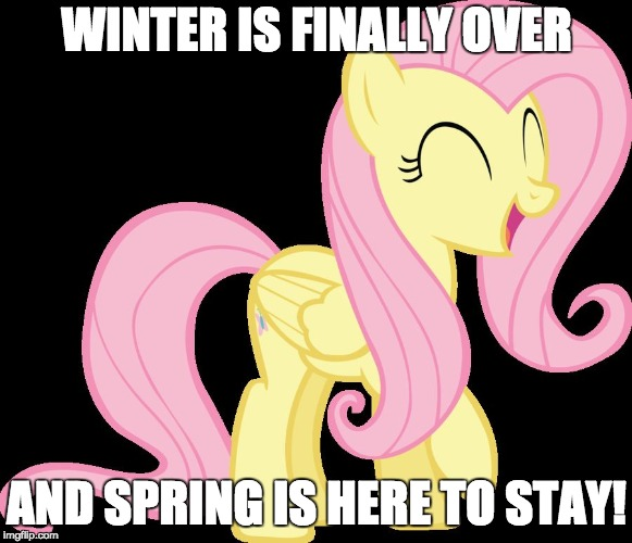 F**KING FINALLY! | WINTER IS FINALLY OVER AND SPRING IS HERE TO STAY! | image tagged in happy fluttershy,memes,happy,spring,ponies,sioux falls | made w/ Imgflip meme maker
