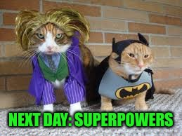 NEXT DAY: SUPERPOWERS | made w/ Imgflip meme maker
