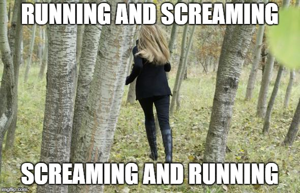 RUNNING AND SCREAMING SCREAMING AND RUNNING | made w/ Imgflip meme maker