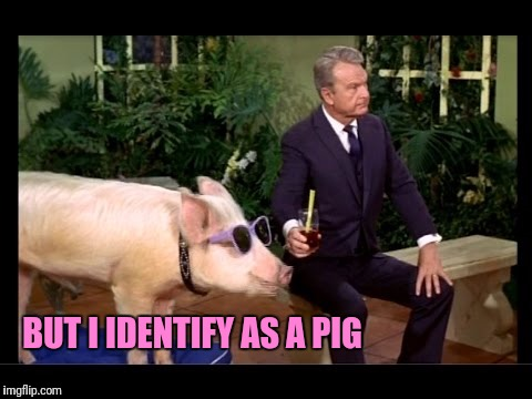 BUT I IDENTIFY AS A PIG | made w/ Imgflip meme maker