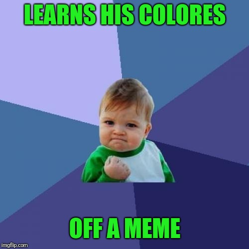 Success Kid Meme | LEARNS HIS COLORES OFF A MEME | image tagged in memes,success kid | made w/ Imgflip meme maker