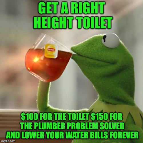 But Thats None Of My Business Meme | GET A RIGHT HEIGHT TOILET $100 FOR THE TOILET $150 FOR THE PLUMBER PROBLEM SOLVED AND LOWER YOUR WATER BILLS FOREVER | image tagged in memes,but thats none of my business,kermit the frog | made w/ Imgflip meme maker