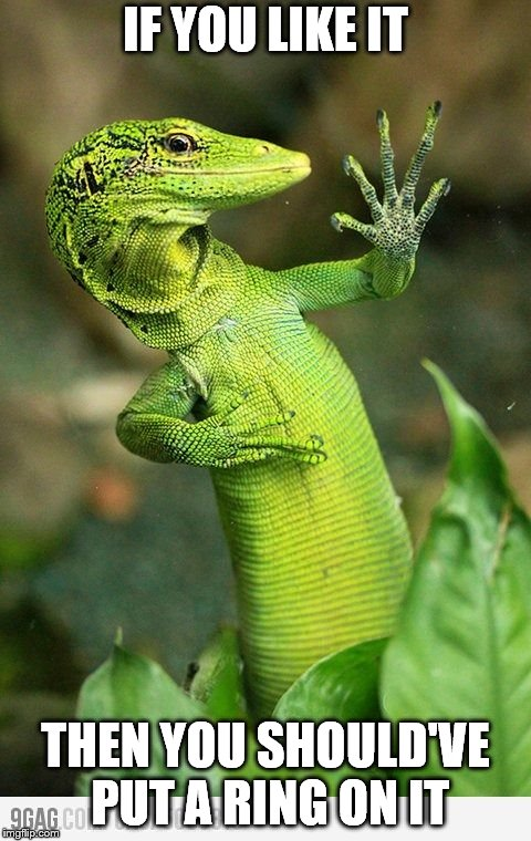 silly lizard | IF YOU LIKE IT THEN YOU SHOULD'VE PUT A RING ON IT | image tagged in lizard | made w/ Imgflip meme maker