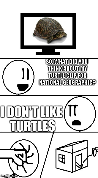 So, what did you think | SO, WHAT DID YOU THINK ABOUT MY TURTLE CLIP FOR NATIONAL GEOGRAPHIC? I DON'T LIKE TURTLES | image tagged in what did you think,memes | made w/ Imgflip meme maker