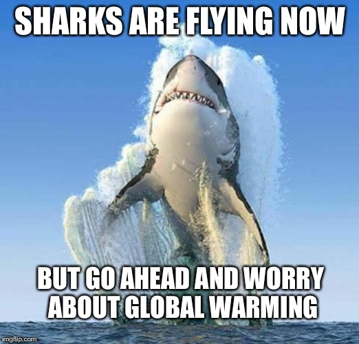 SHARKS ARE FLYING NOW BUT GO AHEAD AND WORRY ABOUT GLOBAL WARMING | image tagged in priorities shark | made w/ Imgflip meme maker
