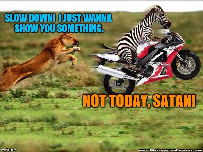 He's gonna make you earn this dinner. | SLOW DOWN!  I JUST WANNA SHOW YOU SOMETHING. NOT TODAY, SATAN! | image tagged in memes,lion,zebra,motorcycle | made w/ Imgflip meme maker